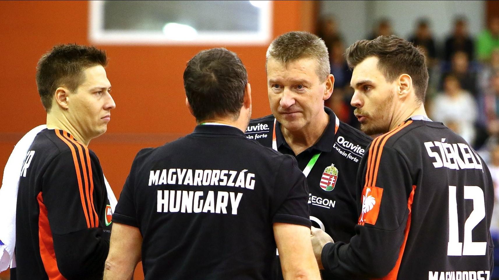A magyar férfi kézilabda-válogatott 14 góllal kikapott Dániától